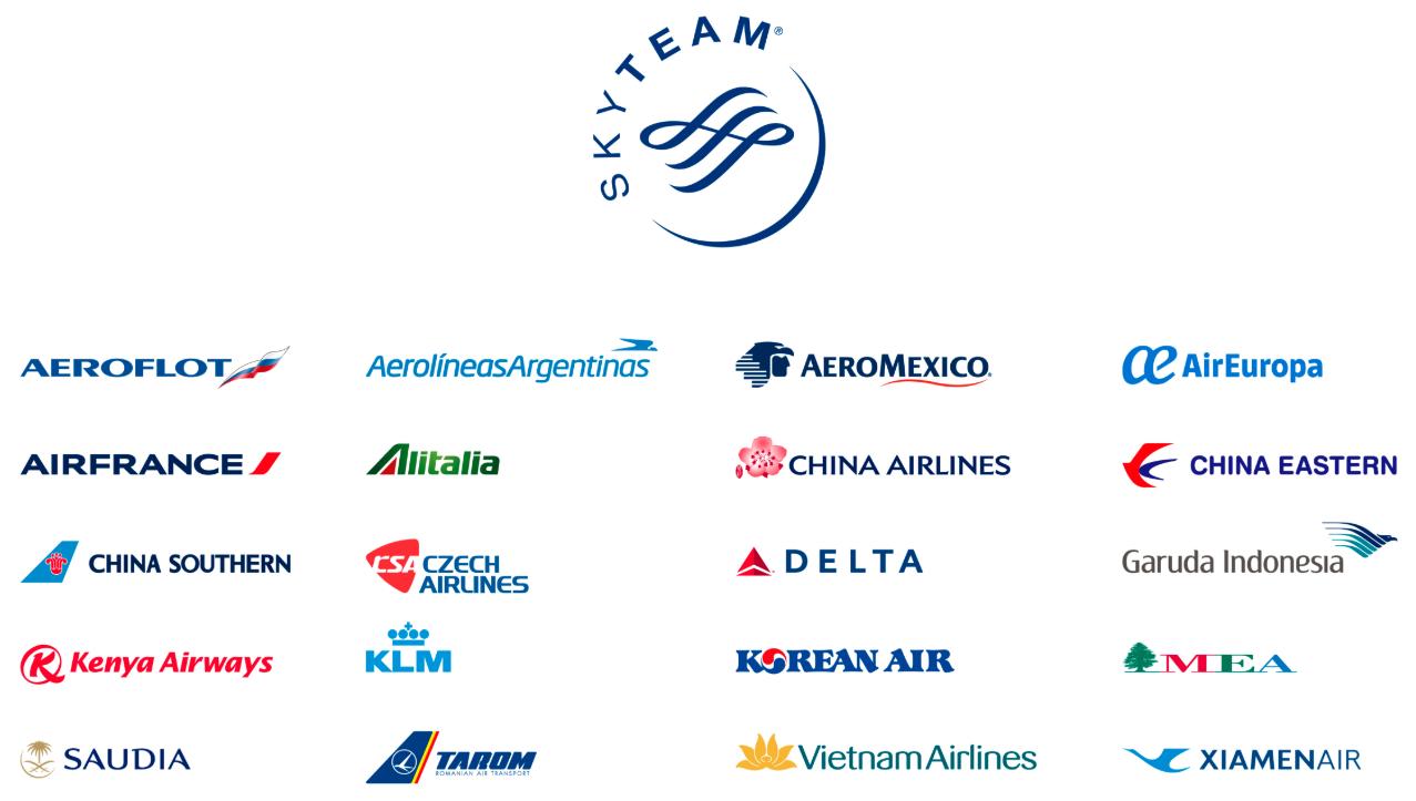 スカイチームロゴと加盟航空会社のロゴ一覧。