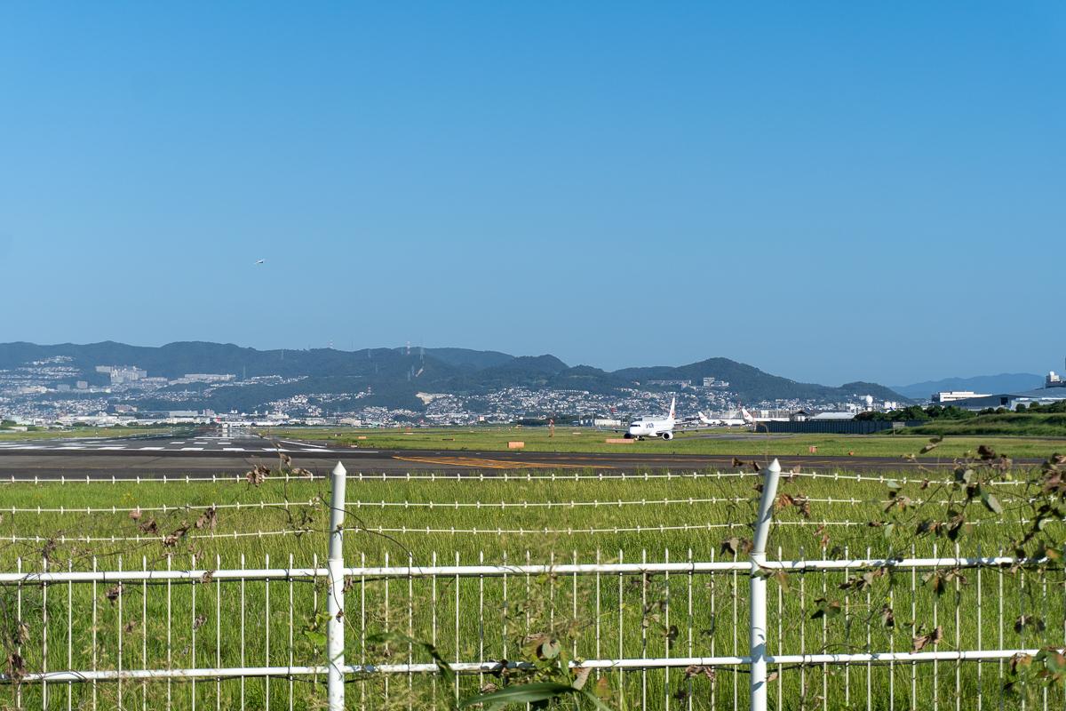 千里川土手からのぞむ大阪伊丹空港滑走路