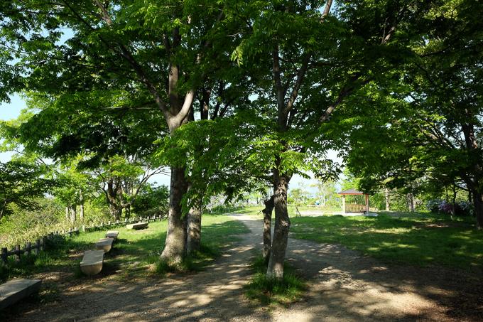 五月平展望台へ続く道中にある広場。ちょっとしたピクニックができる。