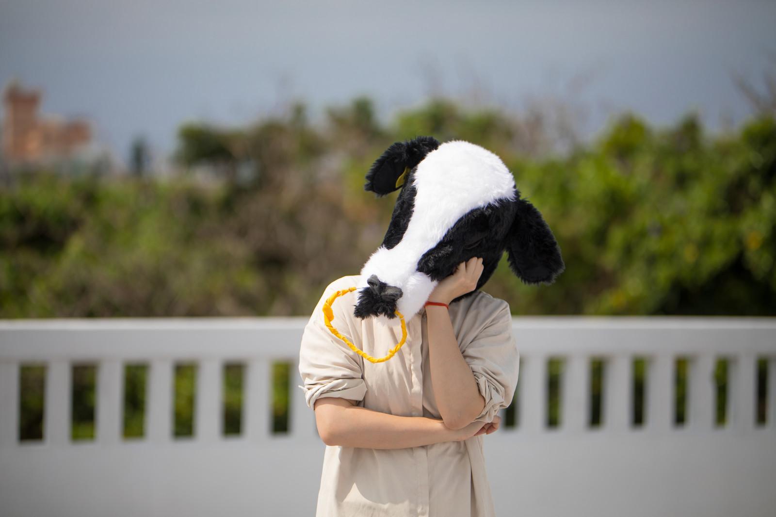思うようにいかなくて悩む牛
