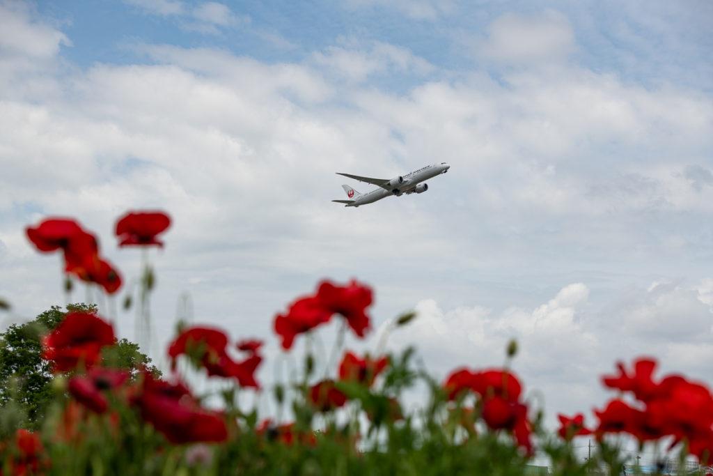 成田空港を離陸するJALB787型機をさくらの丘公園から撮影。